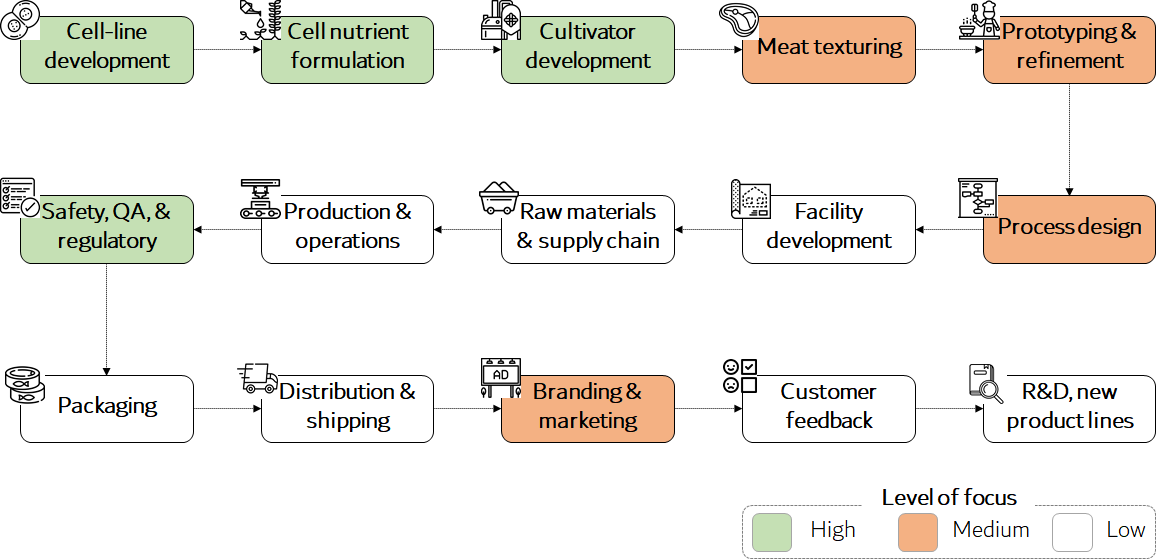 Chart showing the value chain of a cultivated meat company